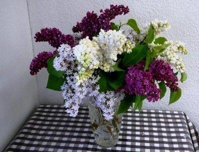 Bouquets fleurs for Bouquet de fleurs pour 30 ans